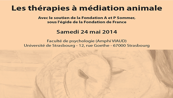 therapies_mediation_animale
